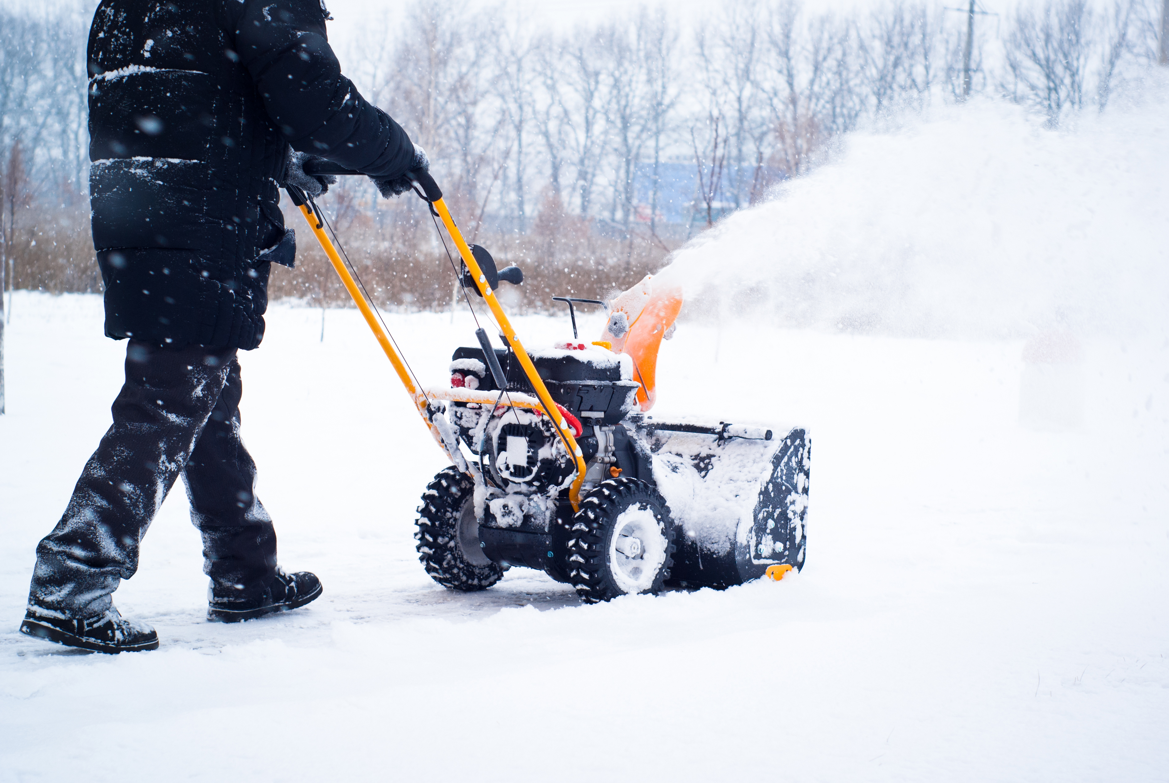 snow removal expert