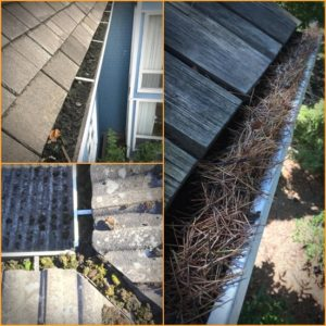 gutter cleaning vancouver