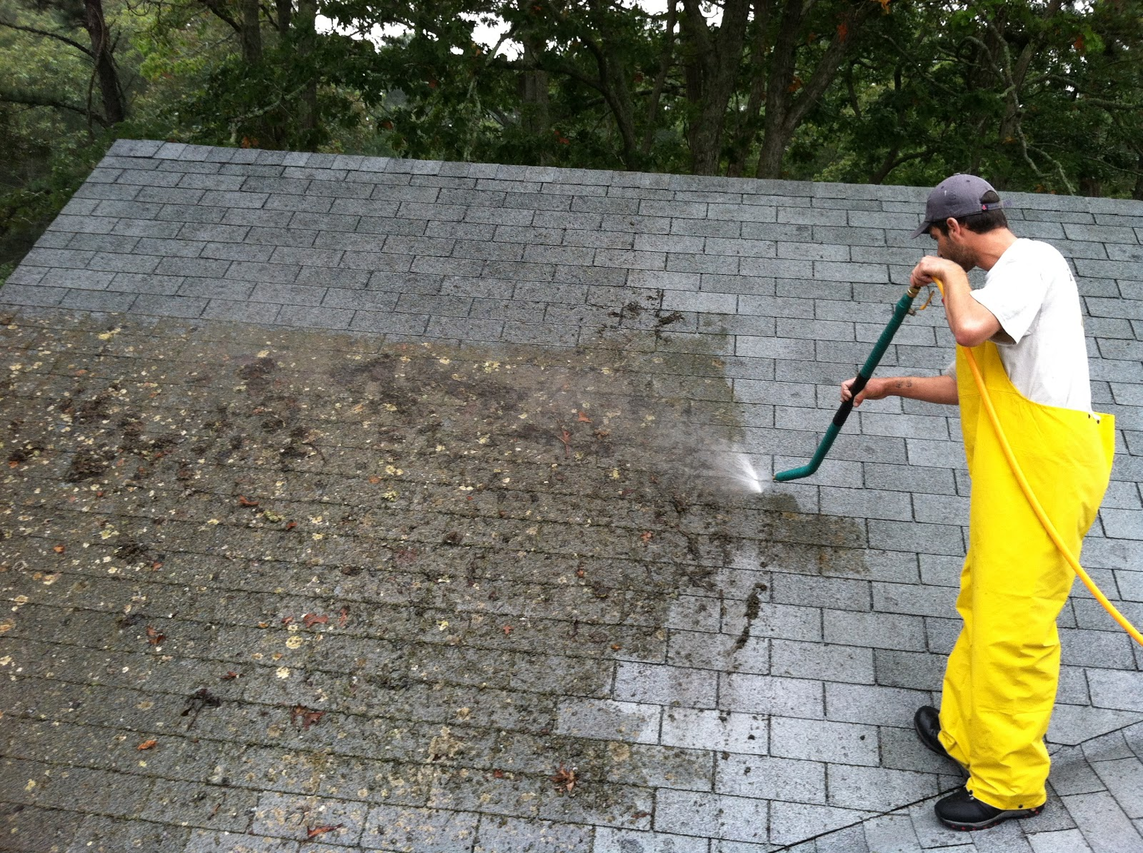 roof cleaning professional
